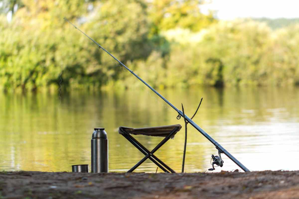 Fishing seat and gear