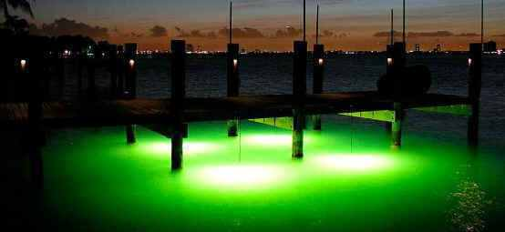 underwater dock lights